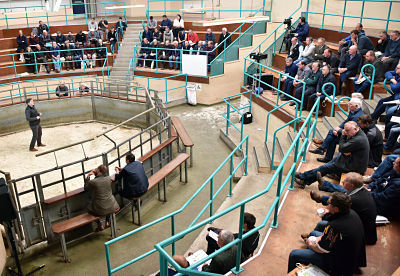 "Dr Francis Lively (AFBI) speaking at the recent ""Breeding for Performance"" event at Ballymena Livestock Market"