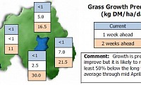Current and predicted grass growth